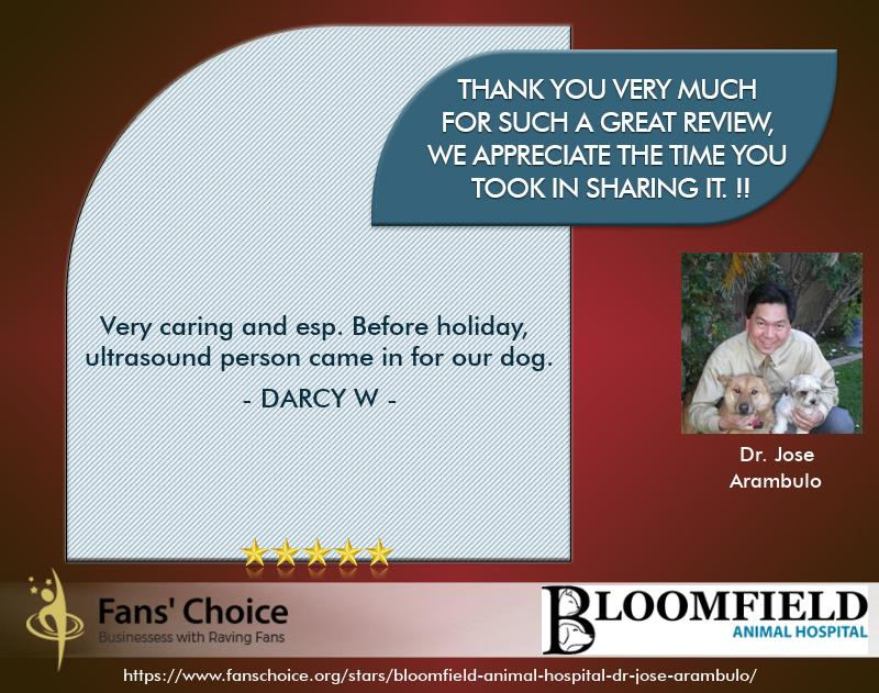 Review 117787