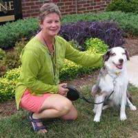 Ark Angels Pet Care, LLC