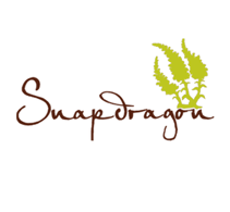 Snapdragon Salon