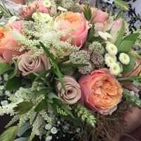 Harrison's Flowers/Freelance Florist