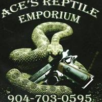 Ace's Reptile Emporium