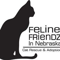Feline Friendz in Nebraska