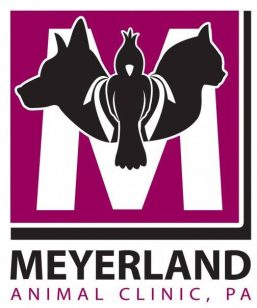 Meyerland Animal Clinic
