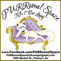 PURRsonal Space – New Jersey's First Cat Lounge