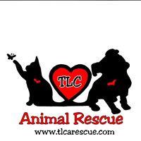 TLC Animal Rescue