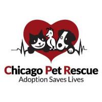 Chicago Pet Rescue
