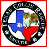Texas Collie & Sheltie Rescue