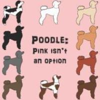 Parti Poodle INC