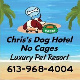 Chris's Dog Hotel No Cages Luxury Pet Resort